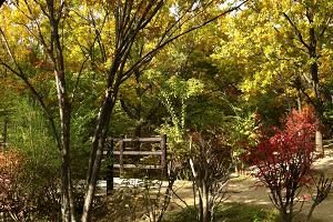 花博記念公園鶴見緑地の画像