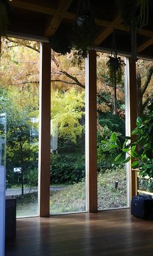 鶴見之森迎賓館の紅葉の画像