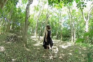 森の中を歩いている画像