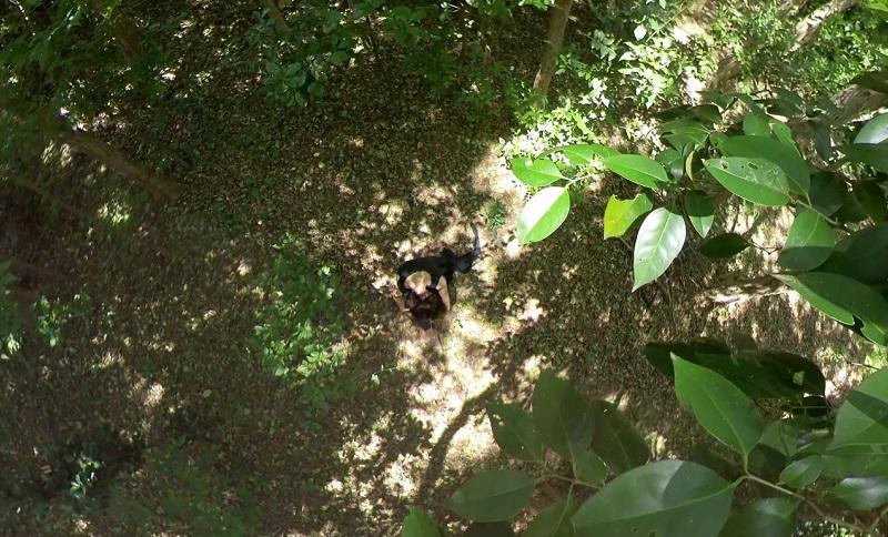 森の中で顔をうずめて座りこんでいる画像